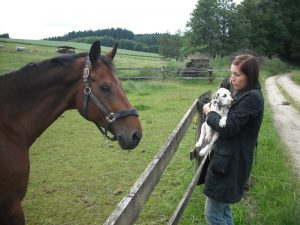Quendolina als Welpe mit Pferd